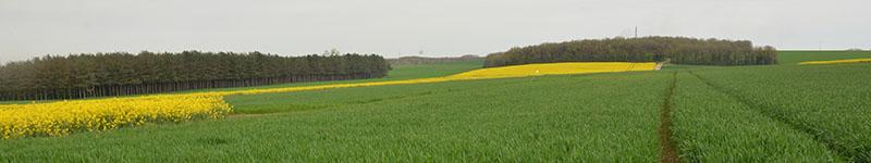 Présentation de la plateforme Syppre en Picardie